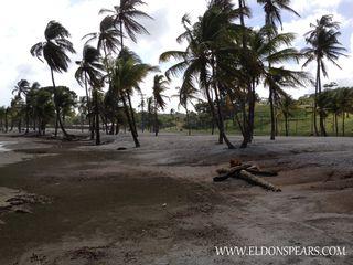 Photo 17: Bala Beach Resort, Colon, Panama