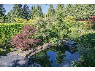 Photo 9: 3404 AYR AV in North Vancouver: Edgemont House for sale : MLS®# V1017687
