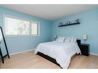 Photo 14: 30 Hawkins Crescent in WINNIPEG: St Vital Residential for sale (South East Winnipeg)  : MLS®# 1516347