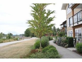 "Photo 11: 105 23285 BILLY BROWN Road in Langley: Fort Langley Condo for sale in ""Village at Bedford Landing"" : MLS®# F1444612"