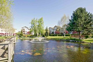 "Photo 14: 103 5600 ANDREWS Road in Richmond: Steveston South Condo for sale in ""LAGOONS"" : MLS®# R2151403"