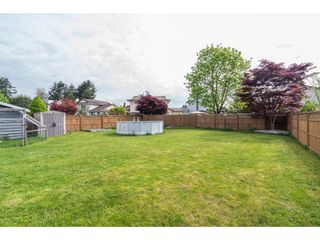 Photo 19: 11722 203RD STREET in Maple Ridge: Southwest Maple Ridge House for sale : MLS®# R2165416