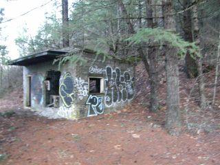 Photo 11: 48800 - 49200 TRANS CANADA Highway in Boston Bar: Boston Bar - Lytton Land for sale (Hope)  : MLS®# R2224261