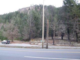 Photo 17: 48800 - 49200 TRANS CANADA Highway in Boston Bar: Boston Bar - Lytton Land for sale (Hope)  : MLS®# R2224261
