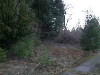 Photo 3: 48800 - 49200 TRANS CANADA Highway in Boston Bar: Boston Bar - Lytton Land for sale (Hope)  : MLS®# R2224261