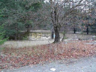 Photo 13: 48800 - 49200 TRANS CANADA Highway in Boston Bar: Boston Bar - Lytton Land for sale (Hope)  : MLS®# R2224261