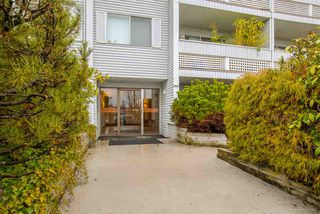 "Photo 1: 201 2055 SUFFOLK Avenue in Port Coquitlam: Glenwood PQ Condo for sale in ""SUFFOLK MANOR"" : MLS®# R2239452"
