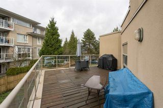 "Photo 15: 212 22277 122 Avenue in Maple Ridge: West Central Condo for sale in ""THE GARDENS"" : MLS®# R2333871"