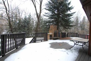 Photo 23: 3550 199 Street in Edmonton: Zone 57 House for sale : MLS®# E4141118