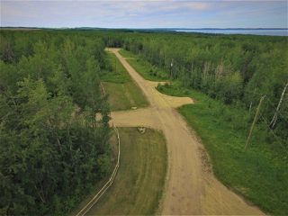Photo 5: #12 13070 Twp Rd 464: Rural Wetaskiwin County Rural Land/Vacant Lot for sale : MLS®# E4146341