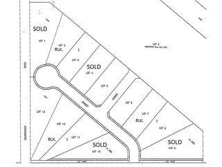 Photo 8: #12 13070 Twp Rd 464: Rural Wetaskiwin County Rural Land/Vacant Lot for sale : MLS®# E4146341