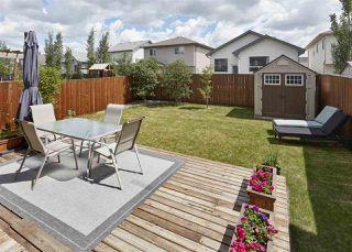 Photo 23: 16761 118 Street in Edmonton: Zone 27 House for sale : MLS®# E4149009