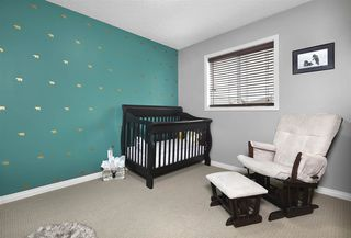 Photo 15: 16761 118 Street in Edmonton: Zone 27 House for sale : MLS®# E4149009