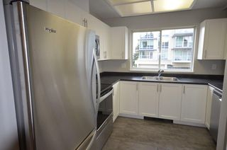 Photo 7: 201 523 WHITING Way in Coquitlam: Coquitlam West Condo for sale : MLS®# R2358664