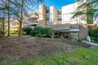 "Photo 1: 312 13364 102 Avenue in Surrey: Whalley Condo for sale in ""Thornbury Manor"" (North Surrey)  : MLS®# R2358877"