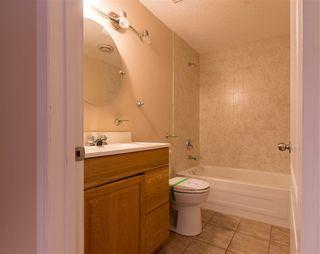 Photo 26: 903 BRECKENRIDGE Court in Edmonton: Zone 58 House for sale : MLS®# E4152949