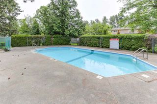 """Photo 19: 3 9994 149 Street in Surrey: Guildford Townhouse for sale in """"TALL TIMBERS"""" (North Surrey)  : MLS®# R2369624"""