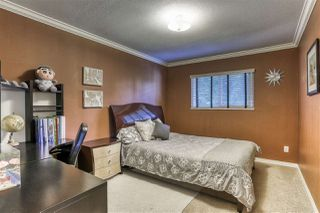 Photo 14: 15728 108A Avenue in Surrey: Fraser Heights House for sale (North Surrey)  : MLS®# R2383317