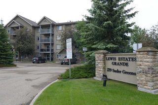 Photo 2: 410 279 SUDER GREENS Drive in Edmonton: Zone 58 Condo for sale : MLS®# E4163274