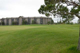 Photo 23: 410 279 SUDER GREENS Drive in Edmonton: Zone 58 Condo for sale : MLS®# E4163274