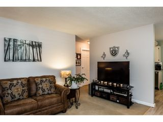 Photo 3: 4480 203 Street in Langley: Langley City House for sale : MLS®# R2384555