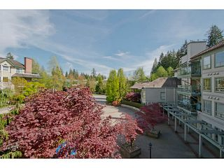 "Photo 13: 313 3658 BANFF Court in North Vancouver: Northlands Condo for sale in ""The Classics"" : MLS®# V1062281"