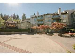 "Photo 1: 313 3658 BANFF Court in North Vancouver: Northlands Condo for sale in ""The Classics"" : MLS®# V1062281"