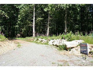 """Photo 2: 11211 BROOKS Road in Mission: Dewdney Deroche Land for sale in """"EAST OF DEROCHE"""" : MLS®# F1447021"""