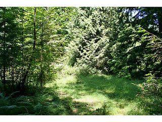 """Photo 3: 11211 BROOKS Road in Mission: Dewdney Deroche Land for sale in """"EAST OF DEROCHE"""" : MLS®# F1447021"""