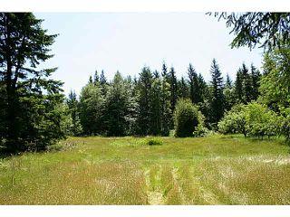 """Photo 6: 11211 BROOKS Road in Mission: Dewdney Deroche Land for sale in """"EAST OF DEROCHE"""" : MLS®# F1447021"""