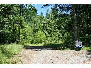 """Photo 1: 11211 BROOKS Road in Mission: Dewdney Deroche Land for sale in """"EAST OF DEROCHE"""" : MLS®# F1447021"""