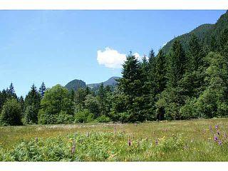 """Photo 7: 11211 BROOKS Road in Mission: Dewdney Deroche Land for sale in """"EAST OF DEROCHE"""" : MLS®# F1447021"""