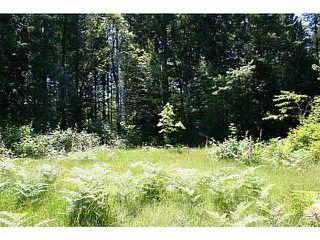 """Photo 5: 11211 BROOKS Road in Mission: Dewdney Deroche Land for sale in """"EAST OF DEROCHE"""" : MLS®# F1447021"""