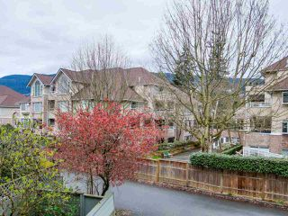 "Photo 8: 306 2119 BELLEVUE Avenue in West Vancouver: Dundarave Condo for sale in ""BELLEVUE GARDENS"" : MLS®# R2048496"