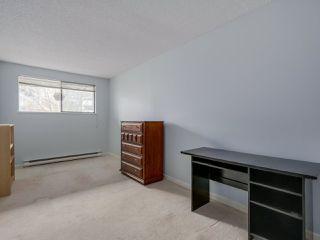 "Photo 13: 306 2119 BELLEVUE Avenue in West Vancouver: Dundarave Condo for sale in ""BELLEVUE GARDENS"" : MLS®# R2048496"