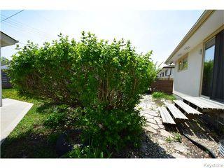 Photo 19: 9 Verbena Street in Winnipeg: West Kildonan / Garden City Residential for sale (North West Winnipeg)  : MLS®# 1613340