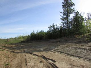Photo 5: 2 53214 RGE RD 13 Road: Rural Parkland County Rural Land/Vacant Lot for sale : MLS®# E4061206
