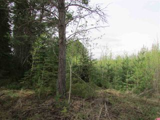 Photo 15: 2 53214 RGE RD 13 Road: Rural Parkland County Rural Land/Vacant Lot for sale : MLS®# E4061206