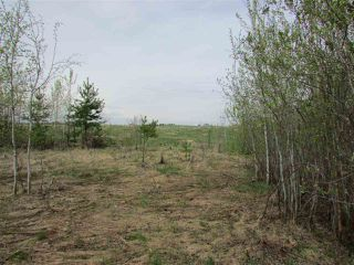 Photo 7: 2 53214 RGE RD 13 Road: Rural Parkland County Rural Land/Vacant Lot for sale : MLS®# E4061206