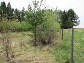 Photo 10: 2 53214 RGE RD 13 Road: Rural Parkland County Rural Land/Vacant Lot for sale : MLS®# E4061206
