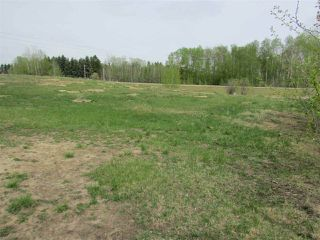 Photo 6: 2 53214 RGE RD 13 Road: Rural Parkland County Rural Land/Vacant Lot for sale : MLS®# E4061206