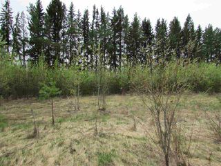 Photo 9: 2 53214 RGE RD 13 Road: Rural Parkland County Rural Land/Vacant Lot for sale : MLS®# E4061206