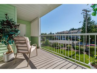 "Photo 19: 116 31850 UNION Street in Abbotsford: Abbotsford West Condo for sale in ""Fernwood Manor"" : MLS®# R2169437"