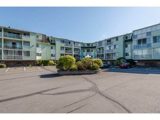 "Photo 1: 116 31850 UNION Street in Abbotsford: Abbotsford West Condo for sale in ""Fernwood Manor"" : MLS®# R2169437"