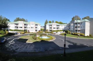 """Photo 9: 203 9763 140 Street in Surrey: Whalley Condo for sale in """"Fraser Gate"""" (North Surrey)  : MLS®# R2214649"""