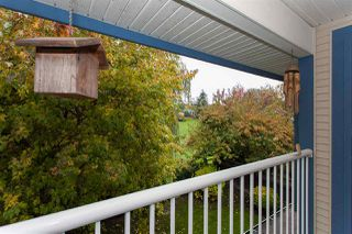 Photo 13: 6151 195 Street in Surrey: Cloverdale BC House for sale (Cloverdale)  : MLS®# R2214889