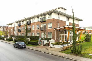 """Photo 12: 106 245 BROOKES Street in New Westminster: Queensborough Condo for sale in """"DUO AT PORT ROYAL"""" : MLS®# R2232821"""