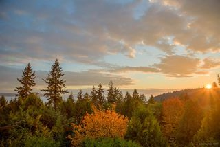 Photo 3: 4345 ROCKRIDGE ROAD in West Vancouver: Rockridge House for sale : MLS®# R2221844