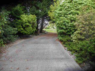 Photo 10: 6154 LOOKOUT Avenue in Sechelt: Sechelt District House for sale (Sunshine Coast)  : MLS®# R2241281