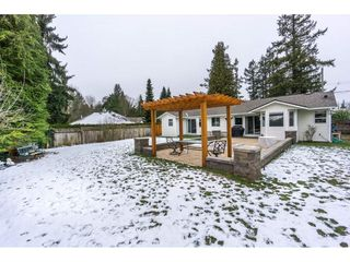 """Photo 19: 23166 88 Avenue in Langley: Fort Langley House for sale in """"Fort Langley"""" : MLS®# R2241481"""